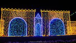 Lights Decoration Services