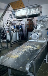 Fully Automatic Pasta Plant