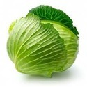 Cabbage Green Vegetable
