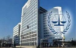 Lawyer For Criminal Cases