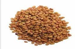 Fenugreek Seeds Dana Methi
