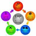 Customized ERP