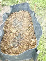 Bio Fertilizers In Ahmednagar À¤œ À¤µ À¤‰à¤° À¤µà¤°à¤• À¤…हमदनगर Maharashtra Get Latest Price From Suppliers Of Bio Fertilizers Microbial Biofertilizer In Ahmednagar