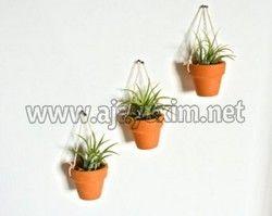 Terracotta Wall Flower Pot