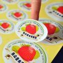 Sticker Designing Service