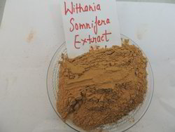 Withania Somnifera Extract 2.5%