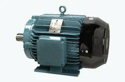 Crompton Greaves Industrial Motor, Voltage: High