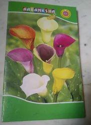 Ruld Long Book Suprem 200pgs