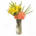 Orange Delight Lilies