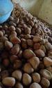 Organic Edible Ball Copra