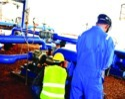 ETP Plants Installation Services