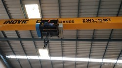 Semi EOT Crane