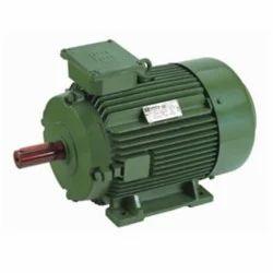 Shree Krishna 1 HP Single Phase Motors
