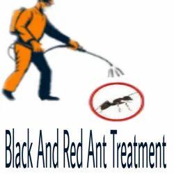 Ant Past Control