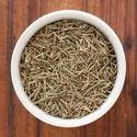 Rosemary Organic Herbs