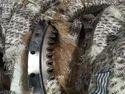 Tata  Ex 200 Excavator Swing Bearings / Ring Gear