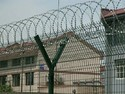 Boundary Wall Razor Wire Covering