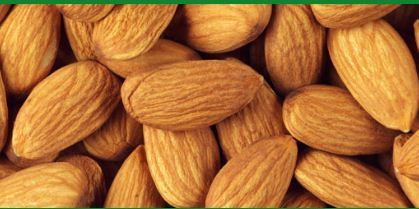 Edible Nuts - Almonds