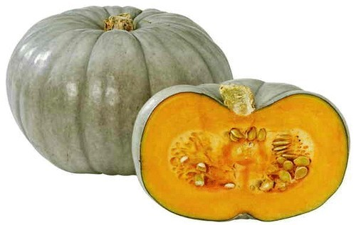 Yellow Green Fresh Pumkin Rs 20 Kilogram Sai Enterprises Id 18927542662 From middle french pompon, from latin pepō, from ancient greek πέπων (pépōn, large melon), from πέπων (pépōn, ripe), from πέπτω (péptō, ripen). fresh pumkin