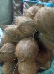 Kerala Coconut