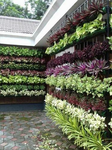 Vertical Garden at Rs 650 /square feet | वर्टीकल गार्डन ...