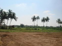 Agriculture Land Dealing Service
