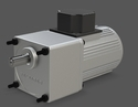 90 Watt Induction Motor With Gearbox