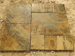 Mint Fossil Sandstone