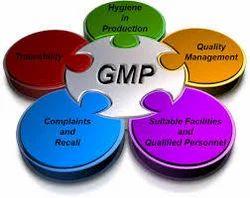 GMP Documentation Service