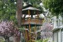 Tree House Construction Delhi
