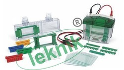 Electrophoresis Kit