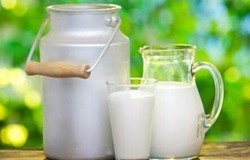 Milk, For Restaurant And Home Purpose