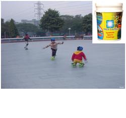 Sports Court Tennis Court Coatings Manufacturer From New Delhi - Skate court flooring