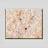 Shivakasi Yellow Granite