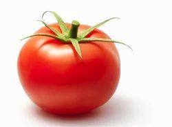 Tomato Testing Services