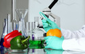Food Analytical Testing Laboratory Service