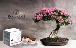 Herbal Luxurious Total White Fairness Pack