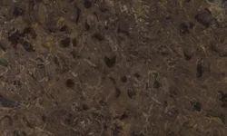 Fossil Quartzite Slabs