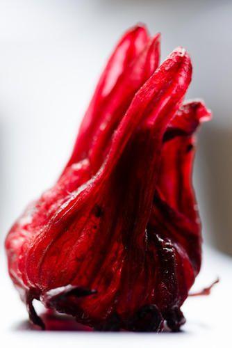 Hibiscus Flower Manufacturer From New Delhi