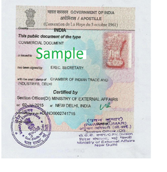 Bachelorhood Certificate Single Status Certificate Apostille In