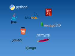 Applications Development And Management Service
