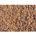 Natural Jowar Seed, For Agriculture