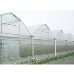 Poly House Insect Net