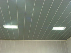 Ceiling & Panelling In Silv