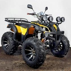 200 CC Bull ATV