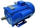 2 Hp Sheet Body Single Phase Electric Motor, Voltage: 220 V, 2700 Rpm
