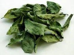 Dry Curry Leaves, Packaging: 5 Kg
