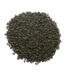 Natural Sesame Seed ( Tilly)
