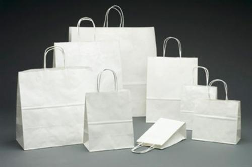 White Paper Bag for Shopping / Promotional