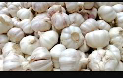 Garlic (Fresh - Bulk Quantity & Export Inquiries Only)
